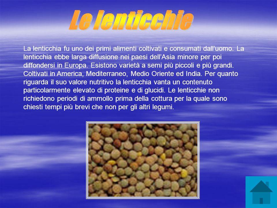 Le lenticchie