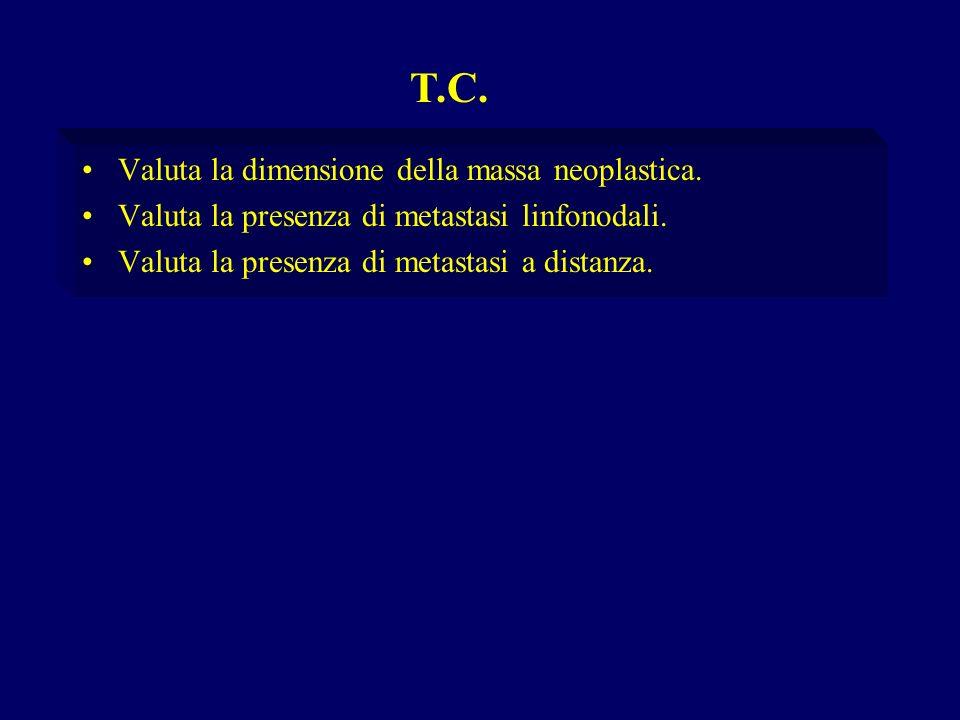 T.C. Valuta la dimensione della massa neoplastica.