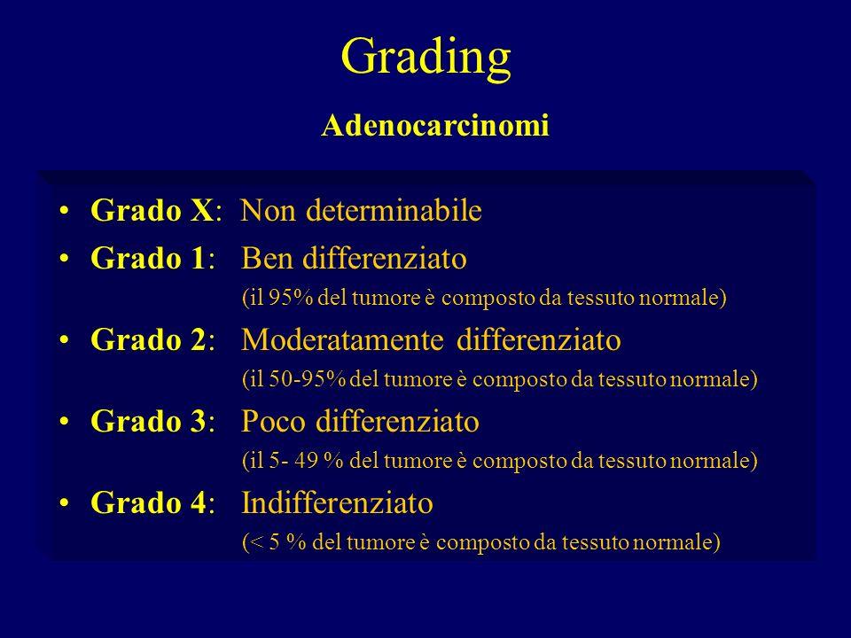 Grading Adenocarcinomi Grado X: Non determinabile