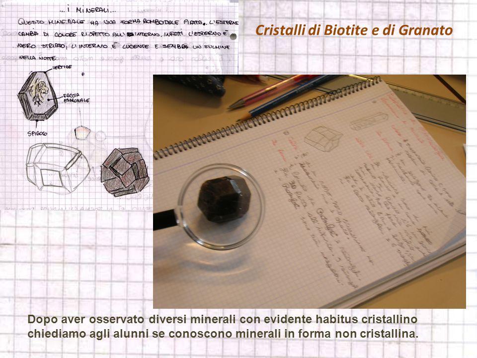 Cristalli di Biotite e di Granato