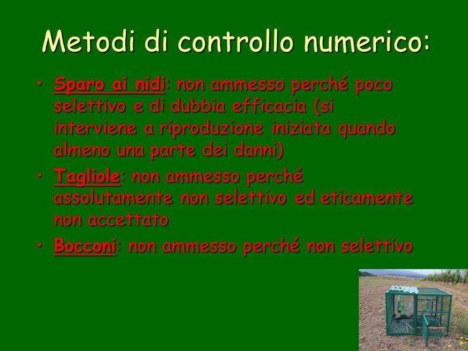 Metodi di controllo numerico: