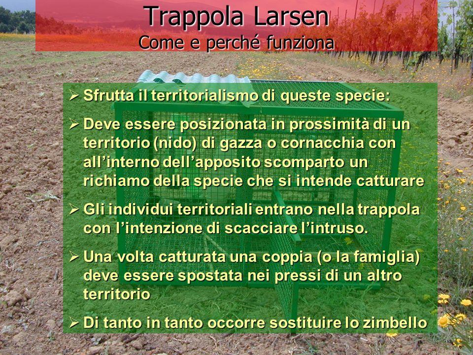 Trappola Larsen Come e perché funziona