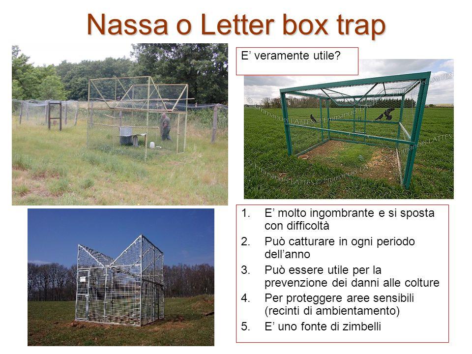 Nassa o Letter box trap E' veramente utile