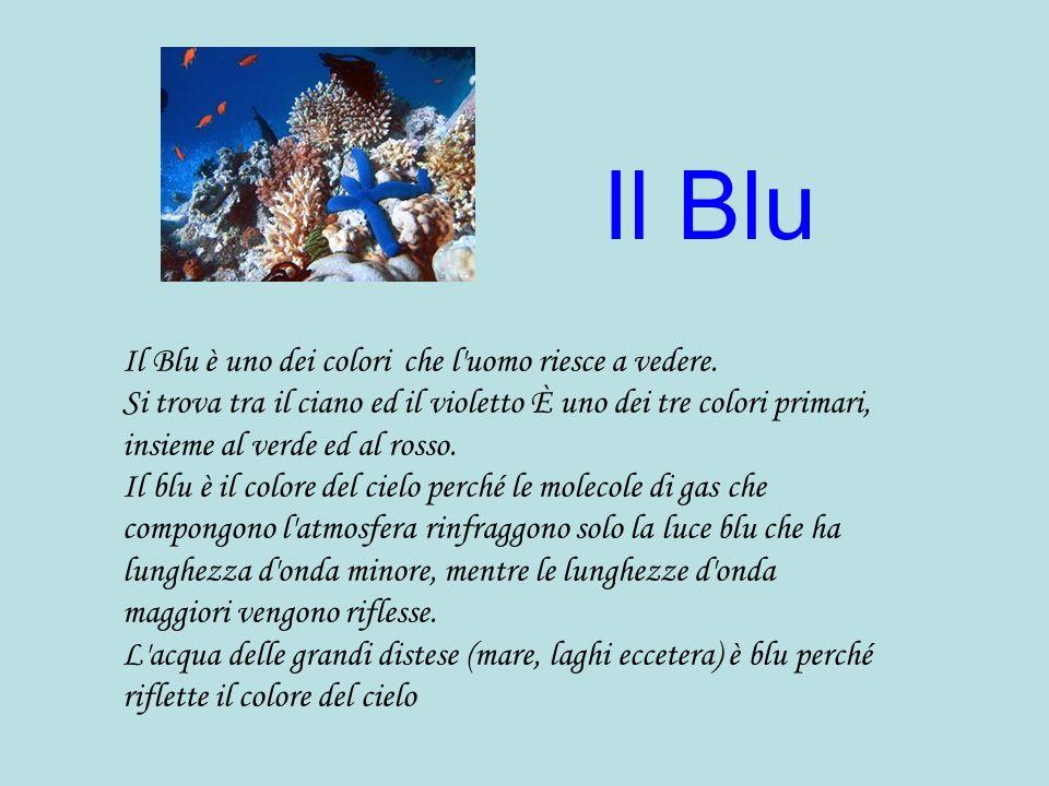 Il Blu Il Blu è uno dei colori che l uomo riesce a vedere.