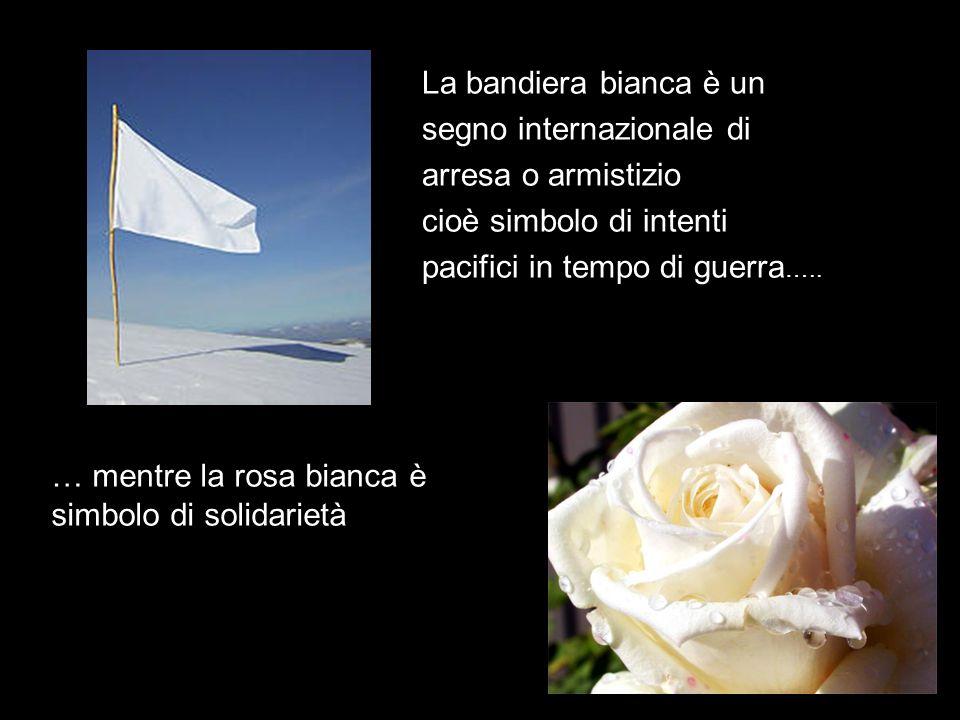 La bandiera bianca è un segno internazionale di. arresa o armistizio. cioè simbolo di intenti. pacifici in tempo di guerra…..