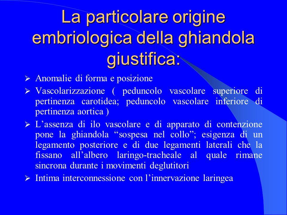 La particolare origine embriologica della ghiandola giustifica: