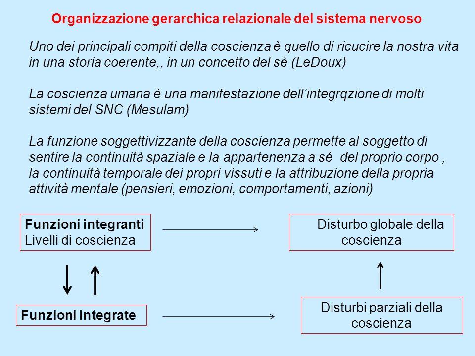 Organizzazione gerarchica relazionale del sistema nervoso