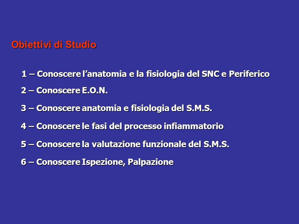 Obiettivi di Studio 2 – Conoscere E.O.N.