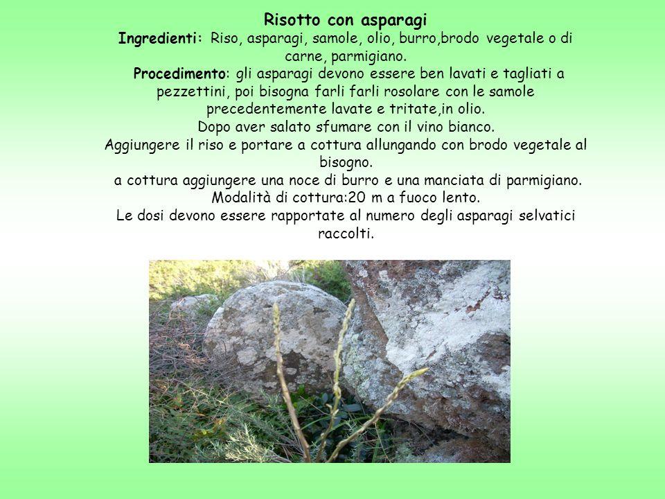 Risotto con asparagiIngredienti: Riso, asparagi, samole, olio, burro,brodo vegetale o di carne, parmigiano.