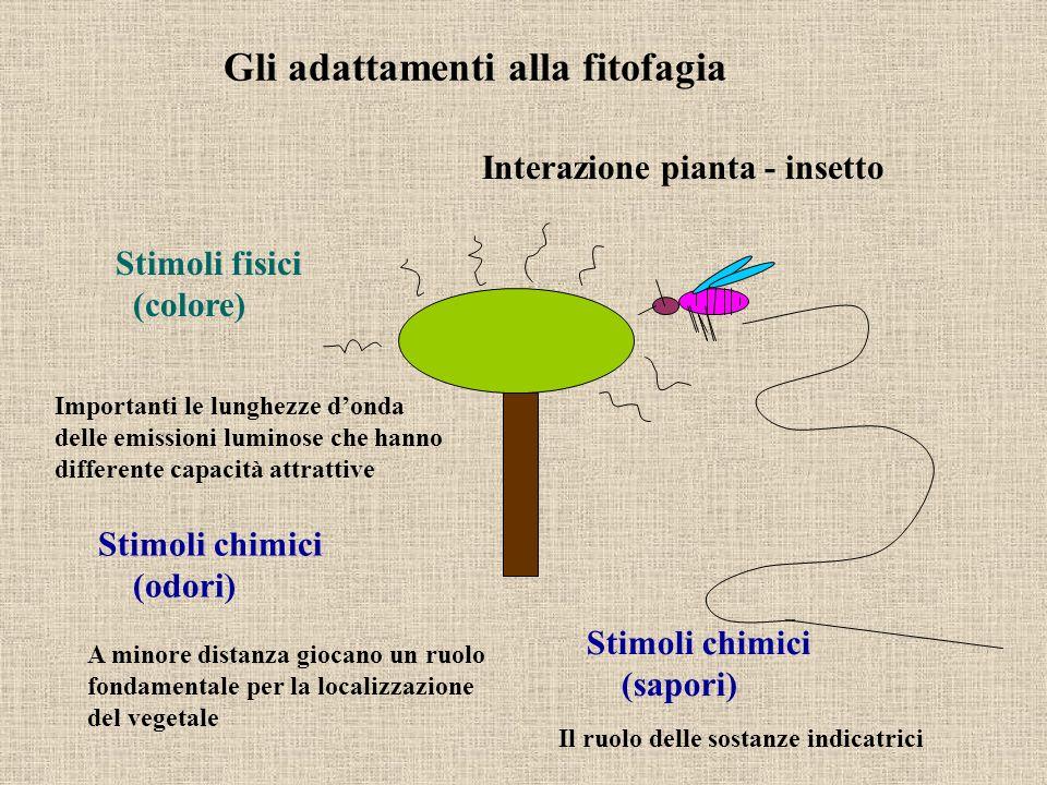 Gli adattamenti alla fitofagia