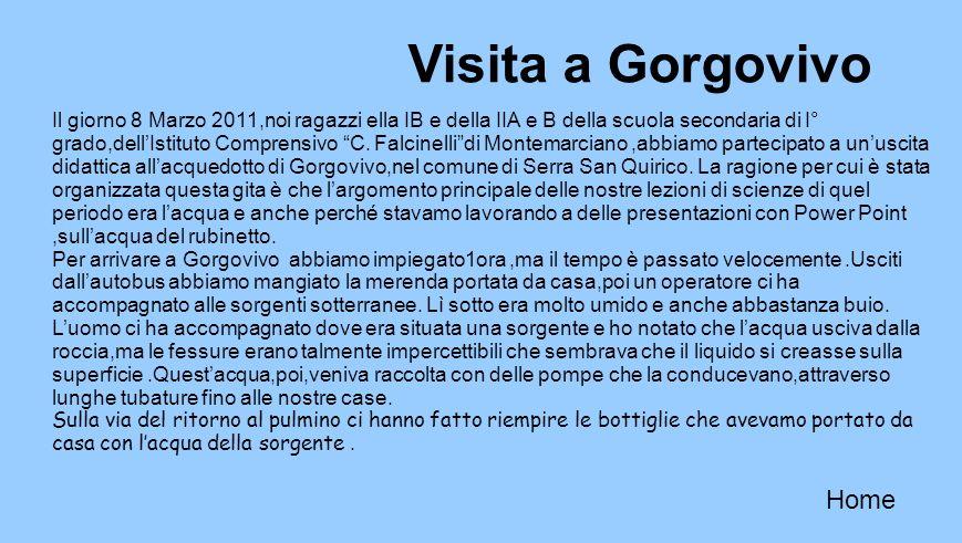Visita a Gorgovivo Home