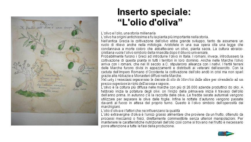 Inserto speciale: L olio d oliva OLIO 8 I
