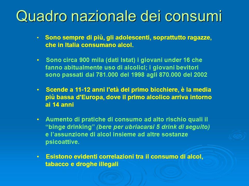 Quadro nazionale dei consumi