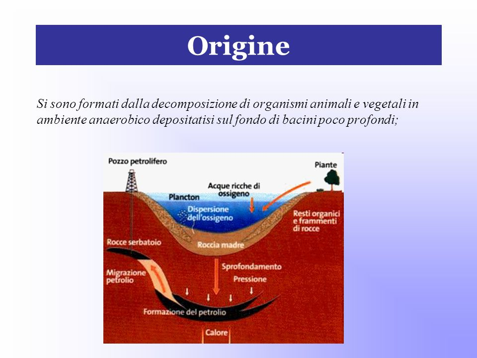 OrigineSi sono formati dalla decomposizione di organismi animali e vegetali in ambiente anaerobico depositatisi sul fondo di bacini poco profondi;