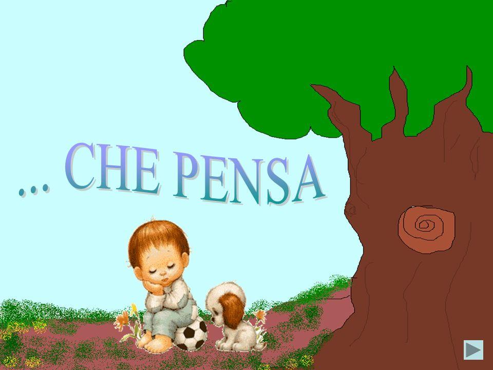... CHE PENSA