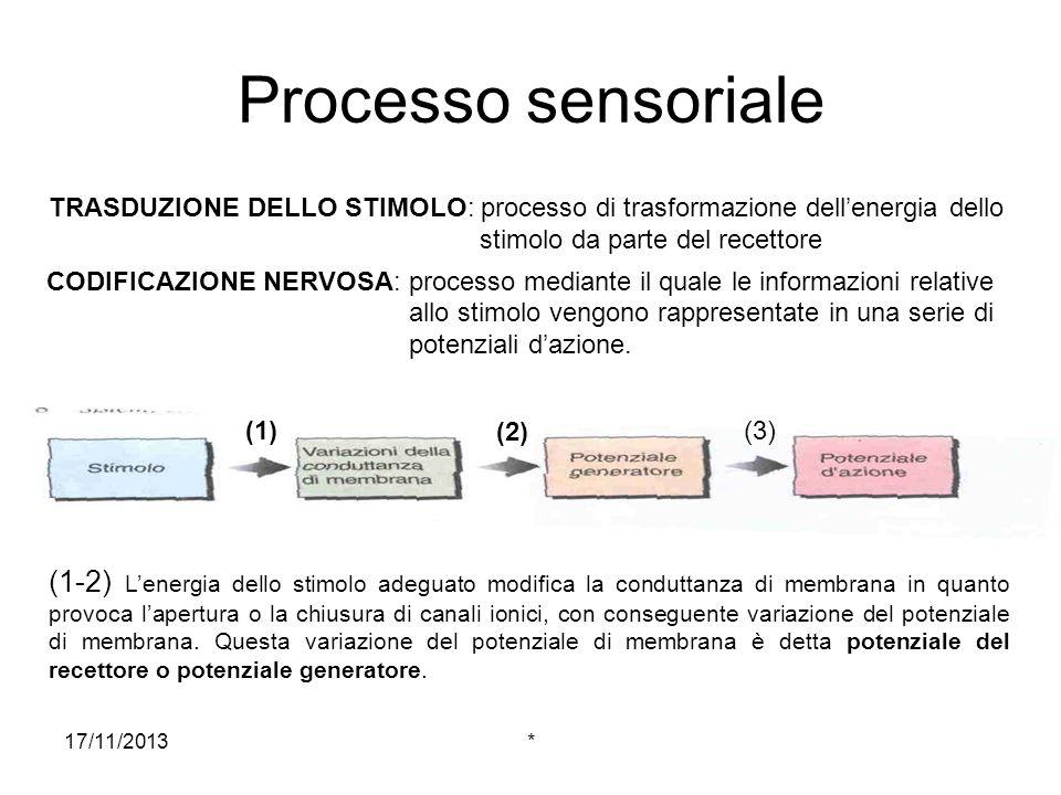 Processo sensoriale TRASDUZIONE DELLO STIMOLO: processo di trasformazione dell'energia dello stimolo da parte del recettore.