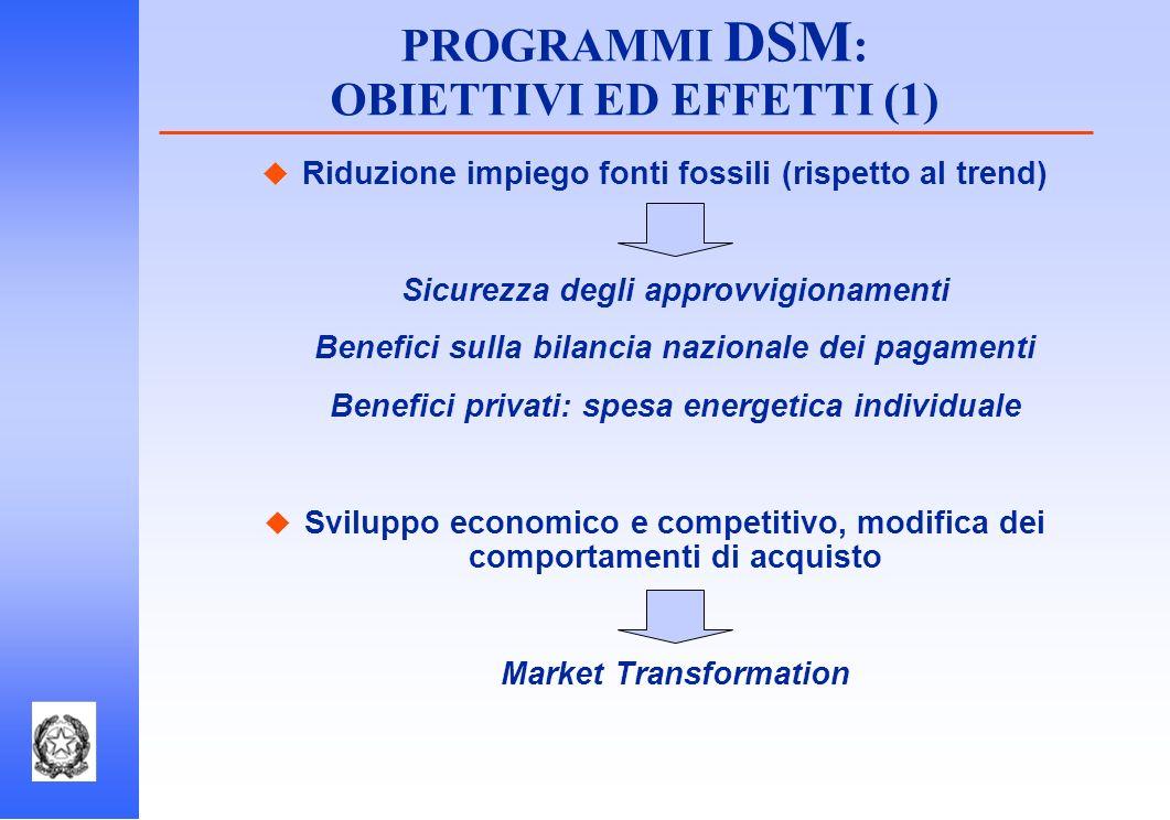 PROGRAMMI DSM: OBIETTIVI ED EFFETTI (1)