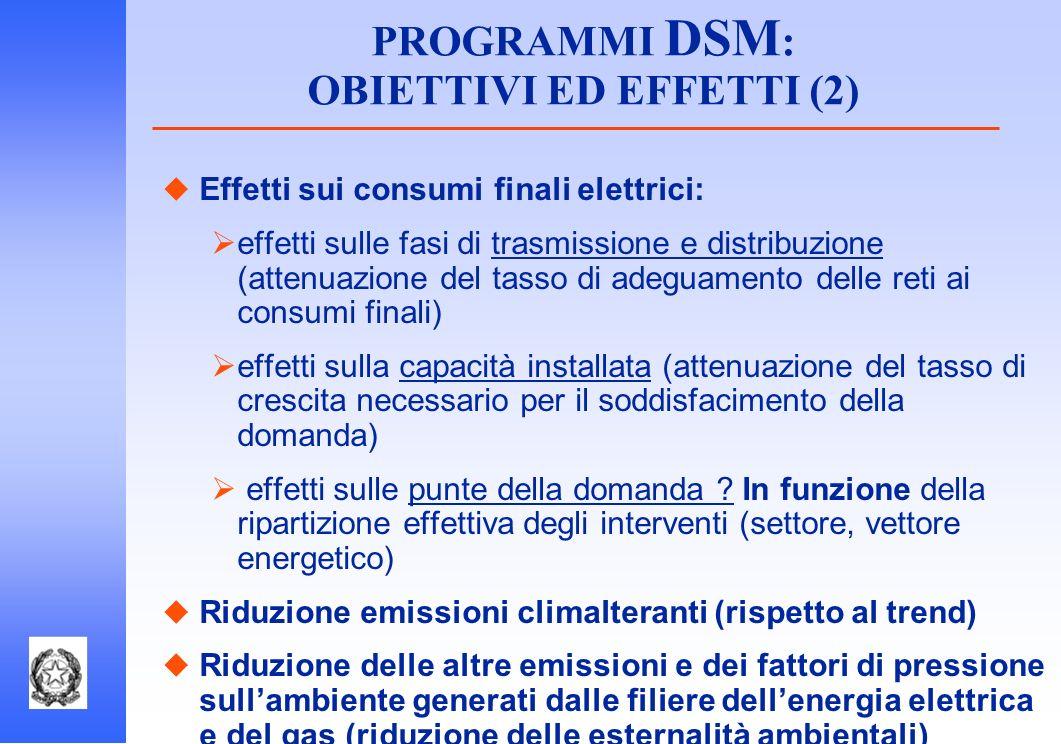 PROGRAMMI DSM: OBIETTIVI ED EFFETTI (2)