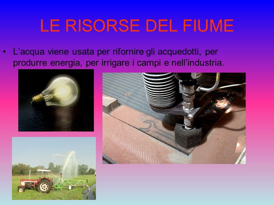 LE RISORSE DEL FIUME L'acqua viene usata per rifornire gli acquedotti, per produrre energia, per irrigare i campi e nell'industria.