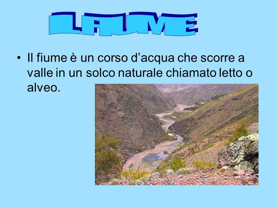 IL FIUME Il fiume è un corso d'acqua che scorre a valle in un solco naturale chiamato letto o alveo.