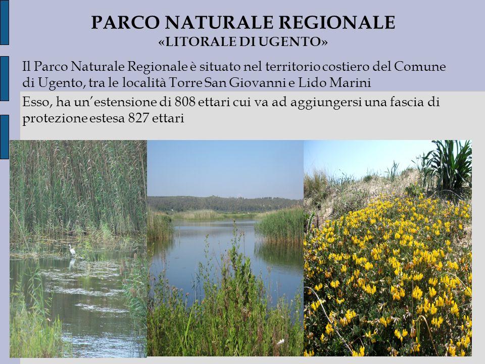 PARCO NATURALE REGIONALE «LITORALE DI UGENTO»