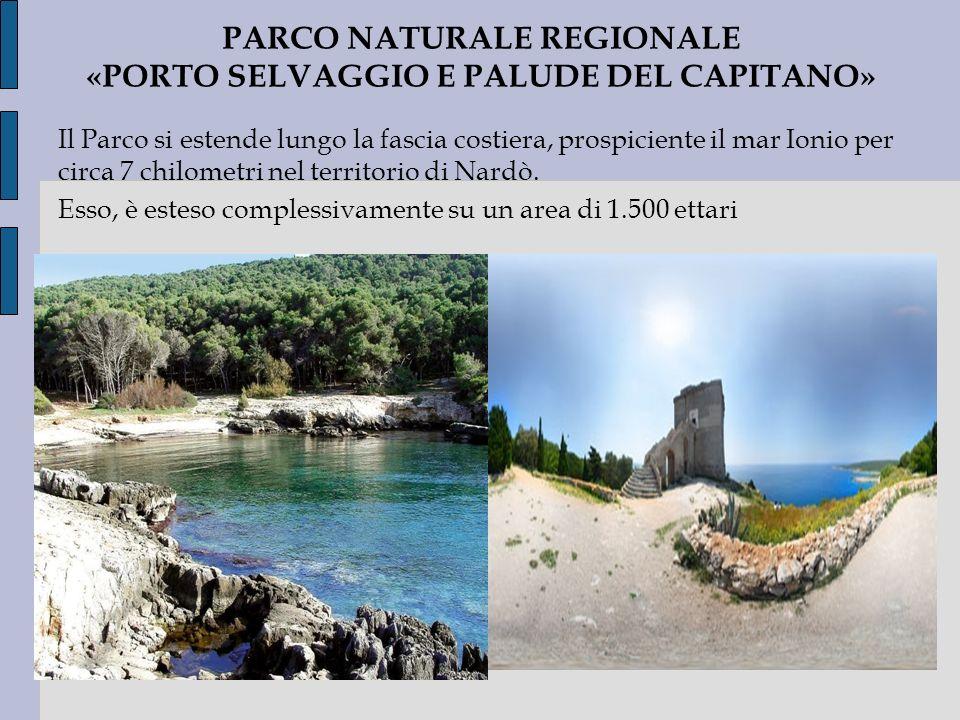 PARCO NATURALE REGIONALE «PORTO SELVAGGIO E PALUDE DEL CAPITANO»