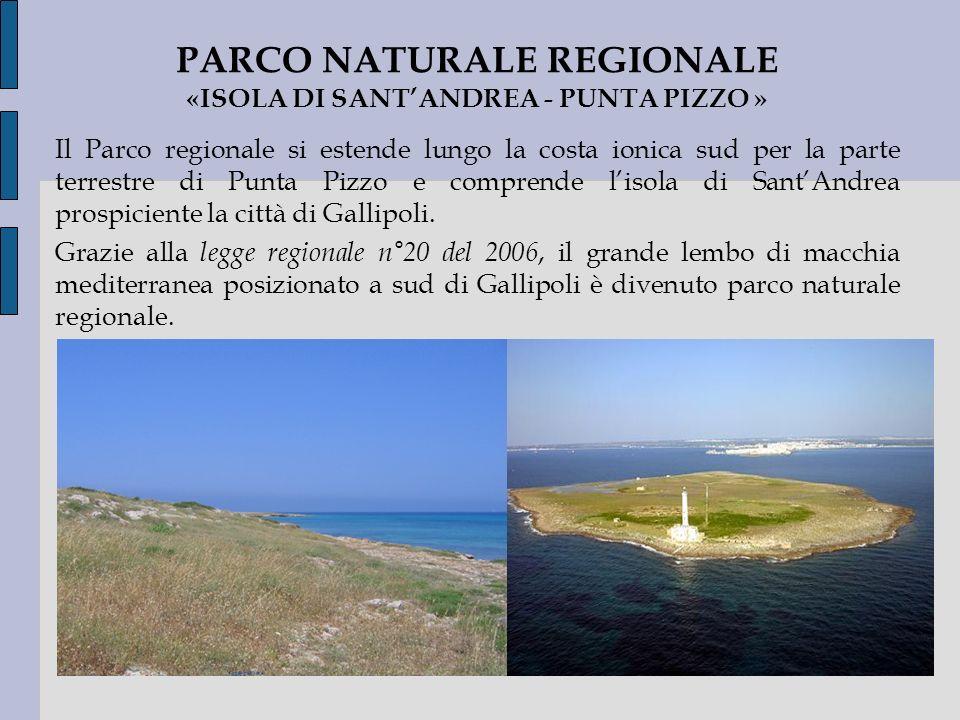 PARCO NATURALE REGIONALE «ISOLA DI SANT'ANDREA - PUNTA PIZZO »