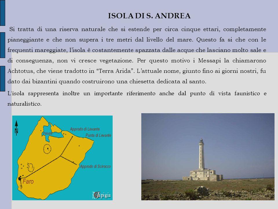 ISOLA DI S. ANDREA