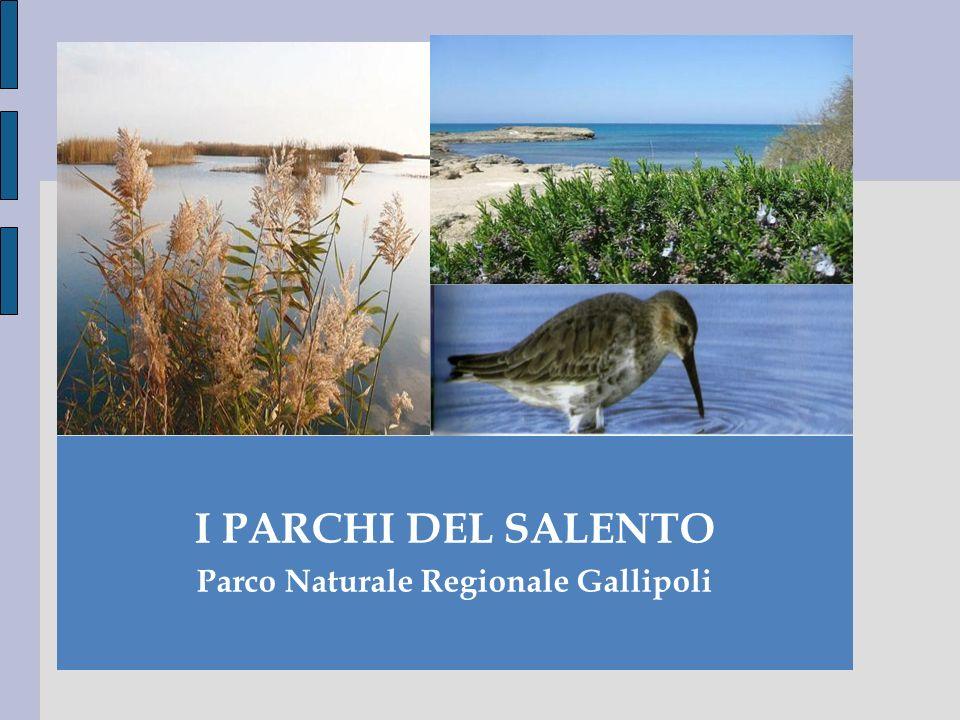Parco Naturale Regionale Gallipoli
