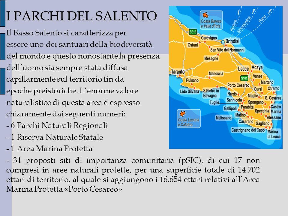 I PARCHI DEL SALENTO Il Basso Salento si caratterizza per