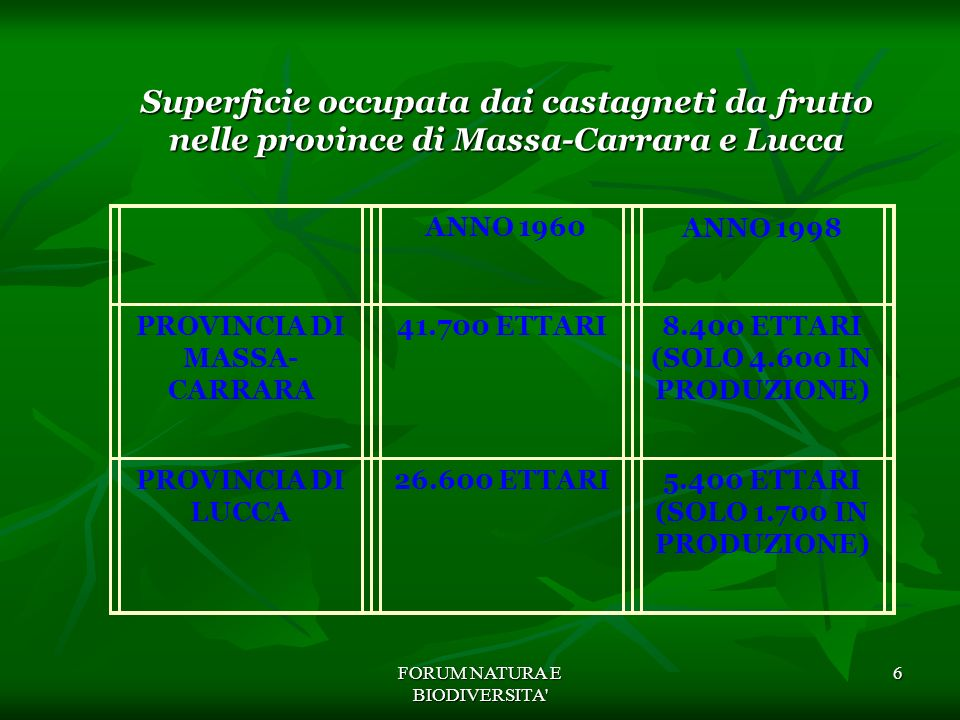 PROVINCIA DI MASSA-CARRARA 8.400 ETTARI (SOLO 4.600 IN PRODUZIONE)