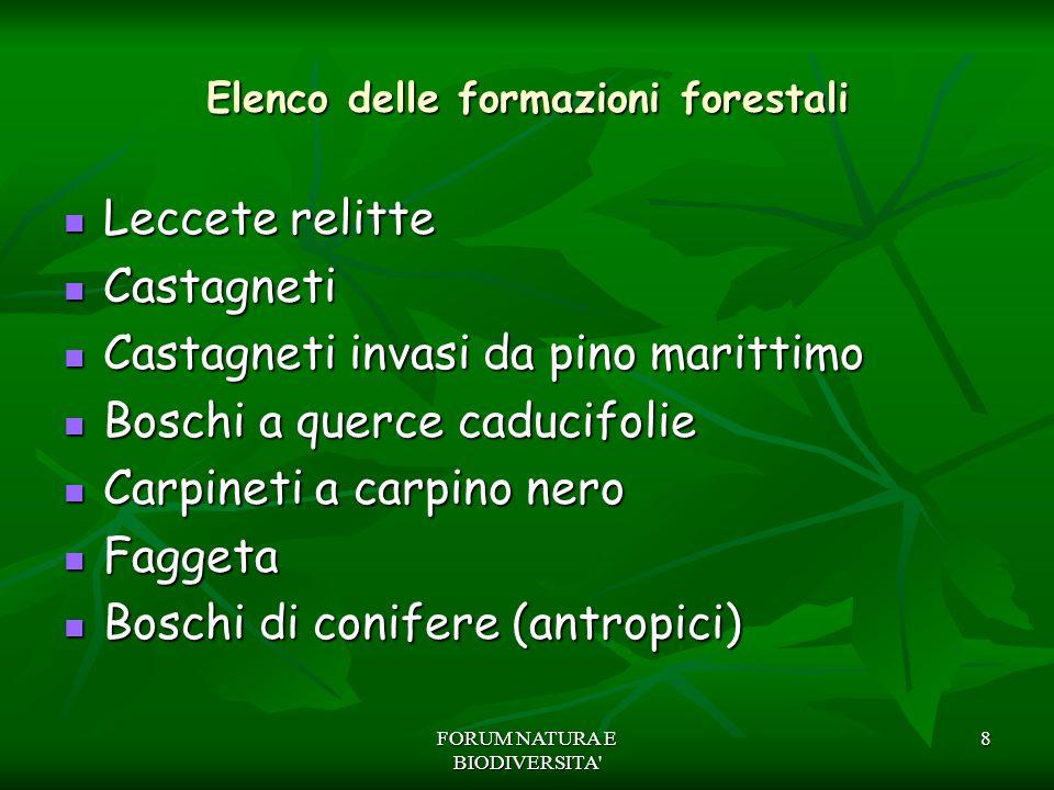 Elenco delle formazioni forestali