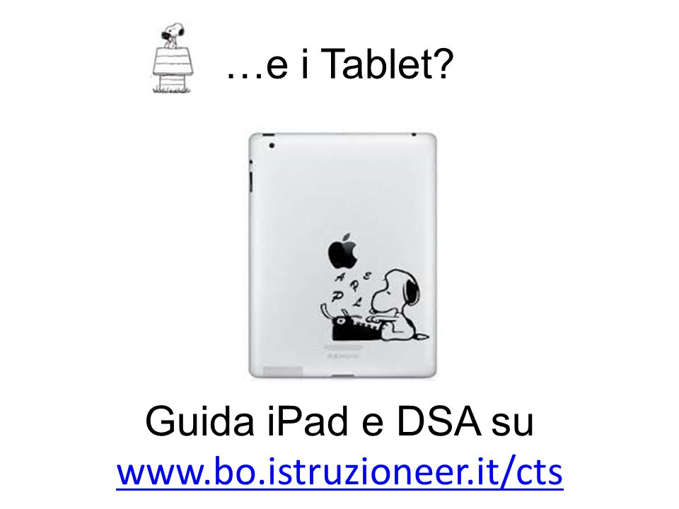 Guida iPad e DSA su www.bo.istruzioneer.it/cts