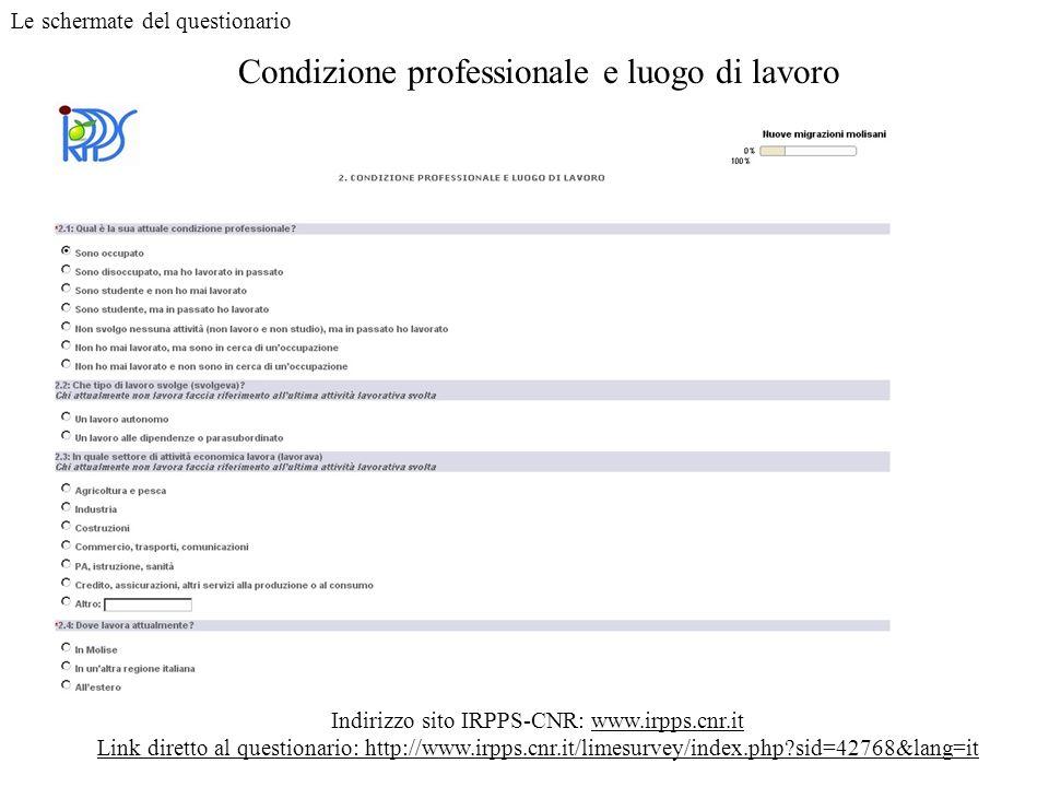 Condizione professionale e luogo di lavoro