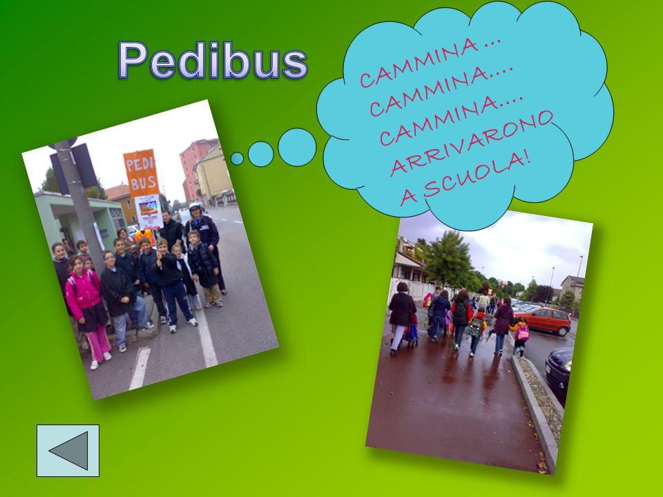 Pedibus CAMMINA … CAMMINA…. ARRIVARONO A SCUOLA!