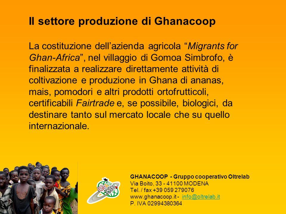 Il settore produzione di Ghanacoop