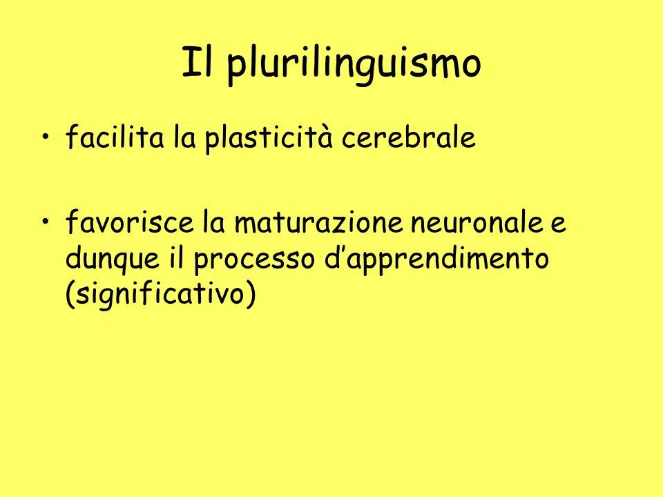 Il plurilinguismo facilita la plasticità cerebrale