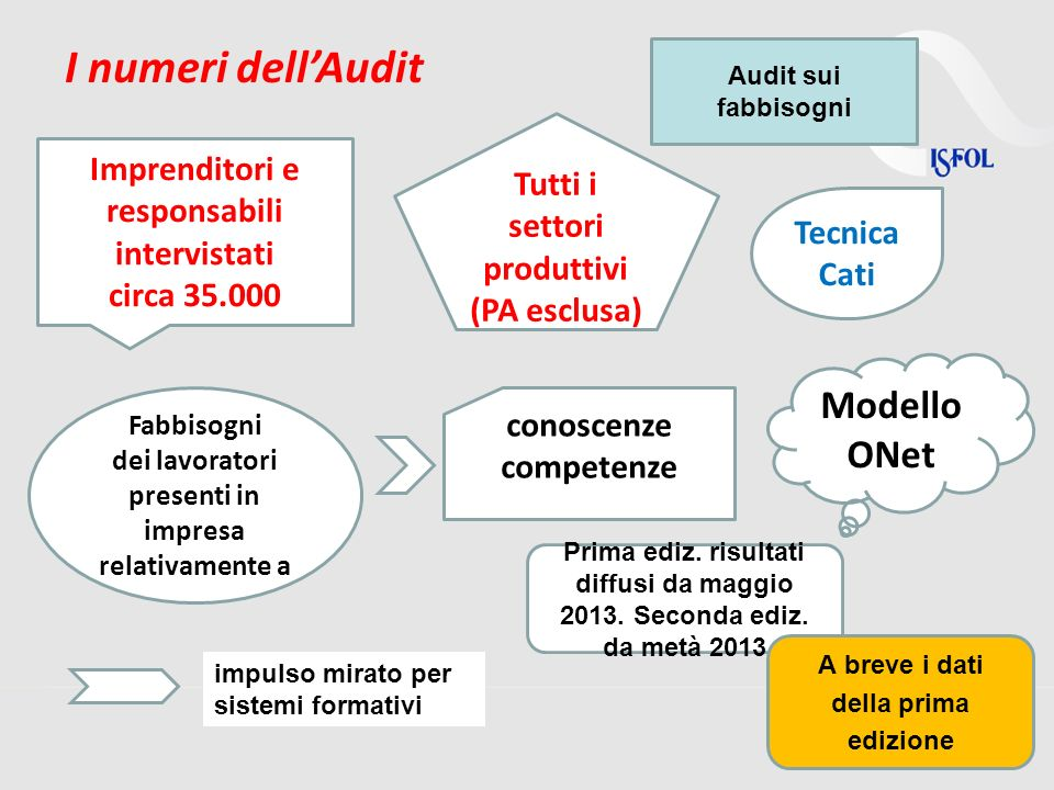 I numeri dell'Audit Modello ONet
