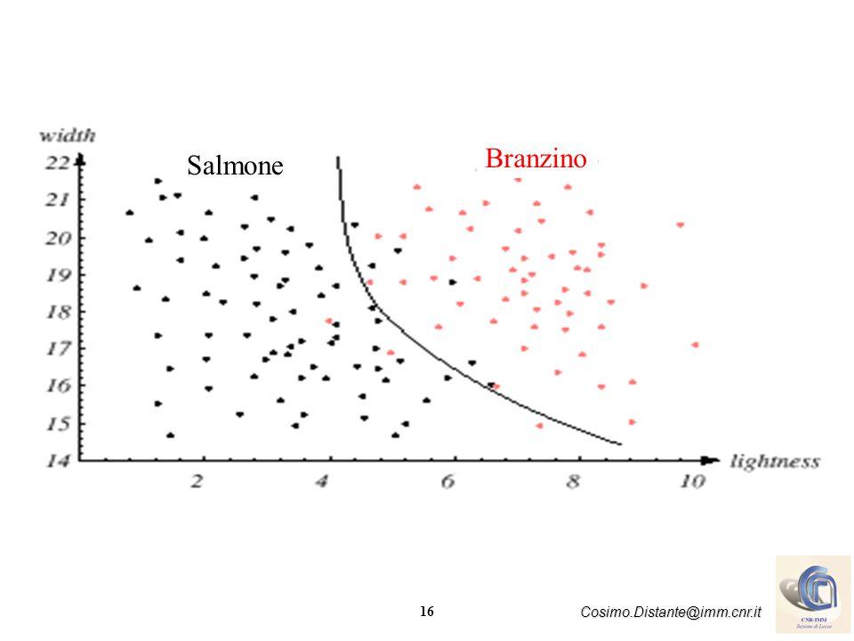 Salmone Branzino