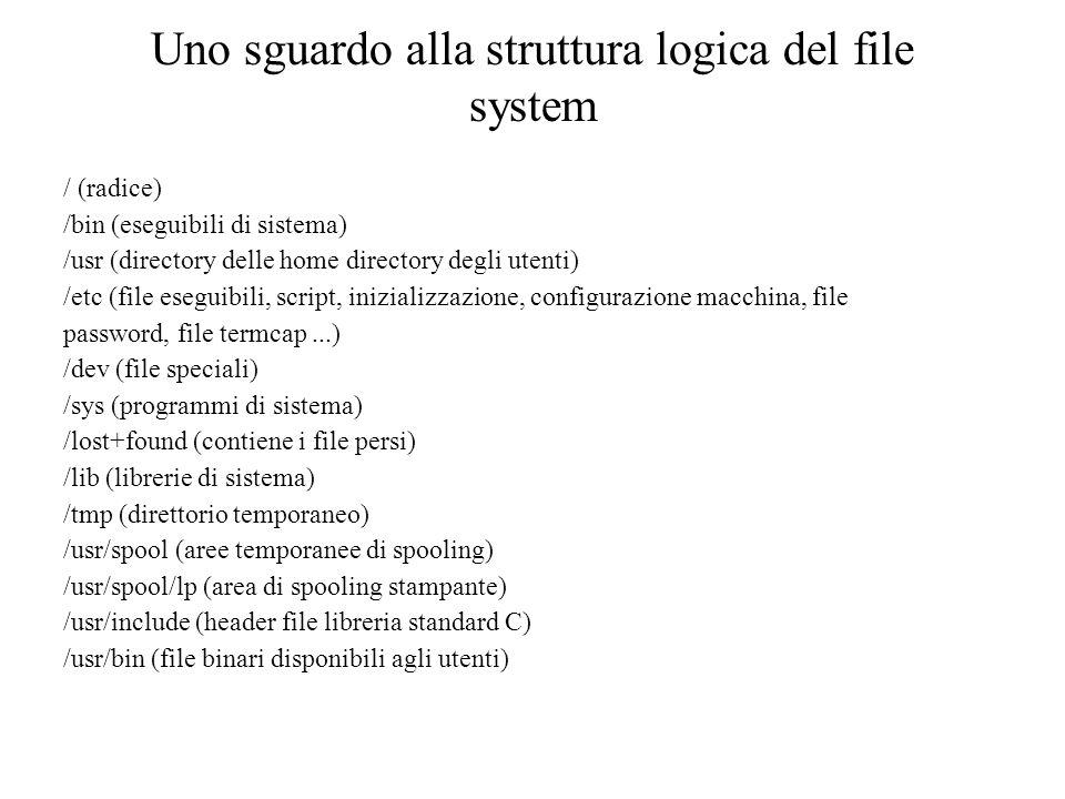 Uno sguardo alla struttura logica del file system