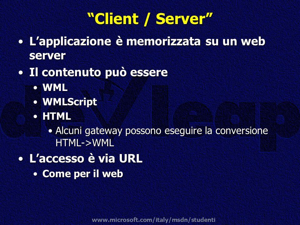 Client / Server L'applicazione è memorizzata su un web server