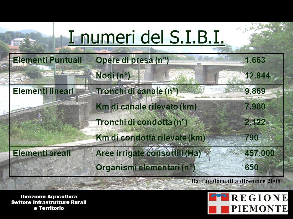 I numeri del S.I.B.I. Elementi Puntuali Opere di presa (n°) 1.663