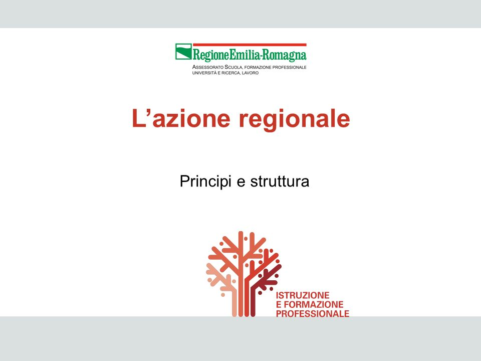 L'azione regionale Principi e struttura 46