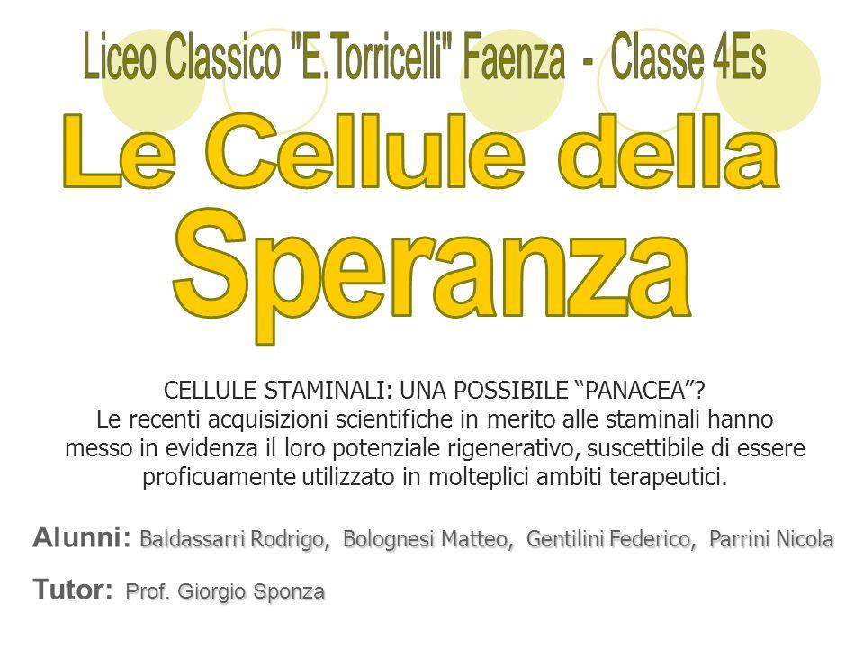 Le Cellule della Liceo Classico E.Torricelli Faenza - Classe 4Es