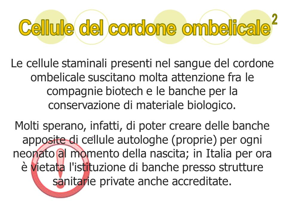 Cellule del cordone ombelicale