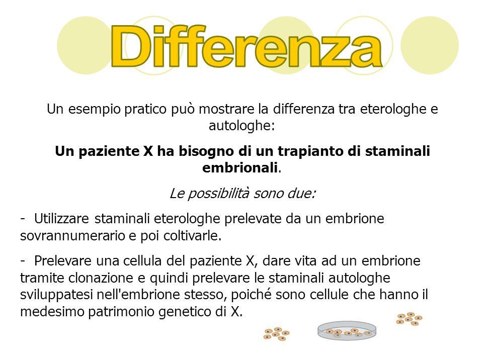DifferenzaUn esempio pratico può mostrare la differenza tra eterologhe e autologhe: