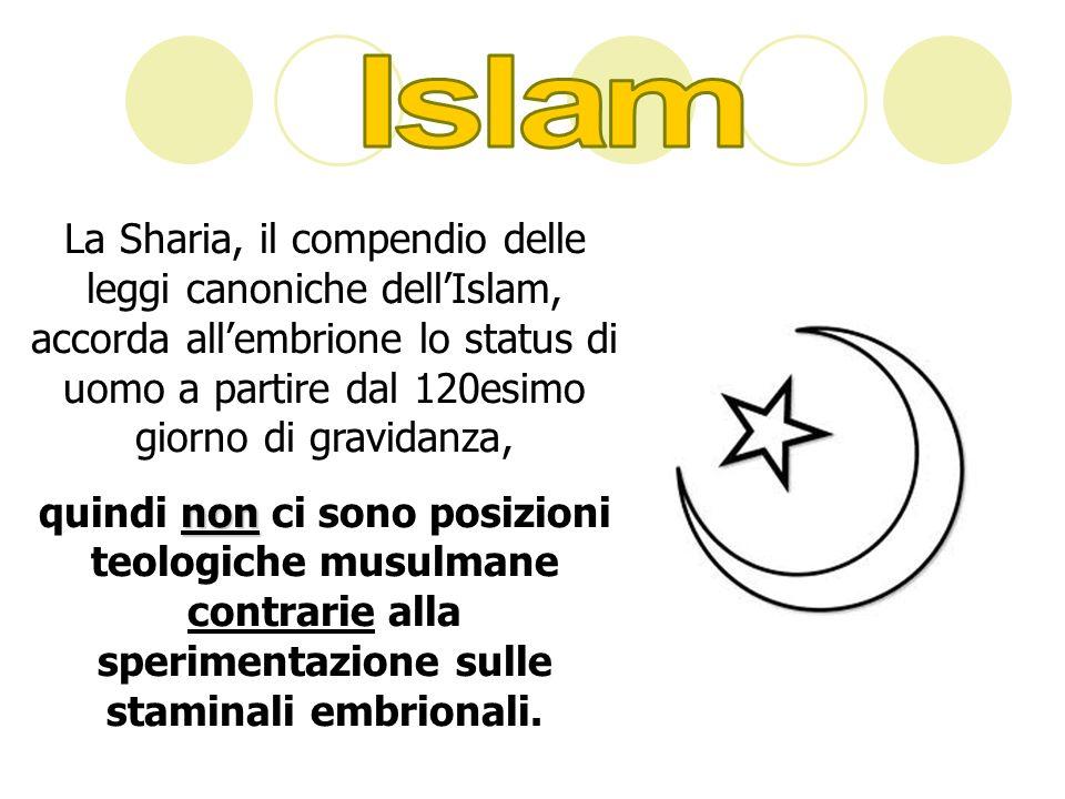 Islam La Sharia, il compendio delle leggi canoniche dell'Islam, accorda all'embrione lo status di uomo a partire dal 120esimo giorno di gravidanza,