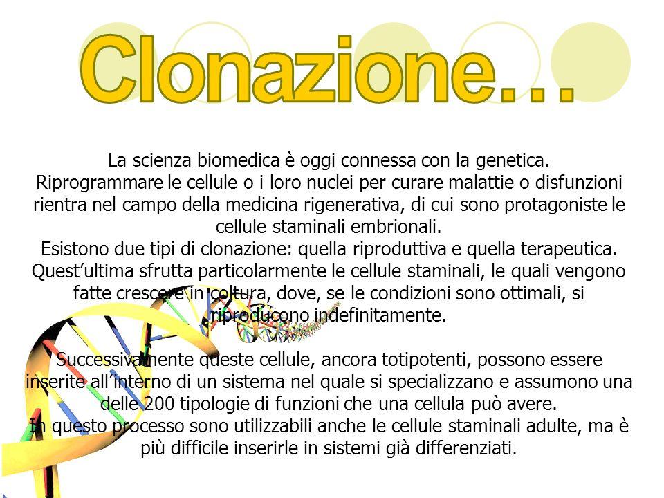 La scienza biomedica è oggi connessa con la genetica.