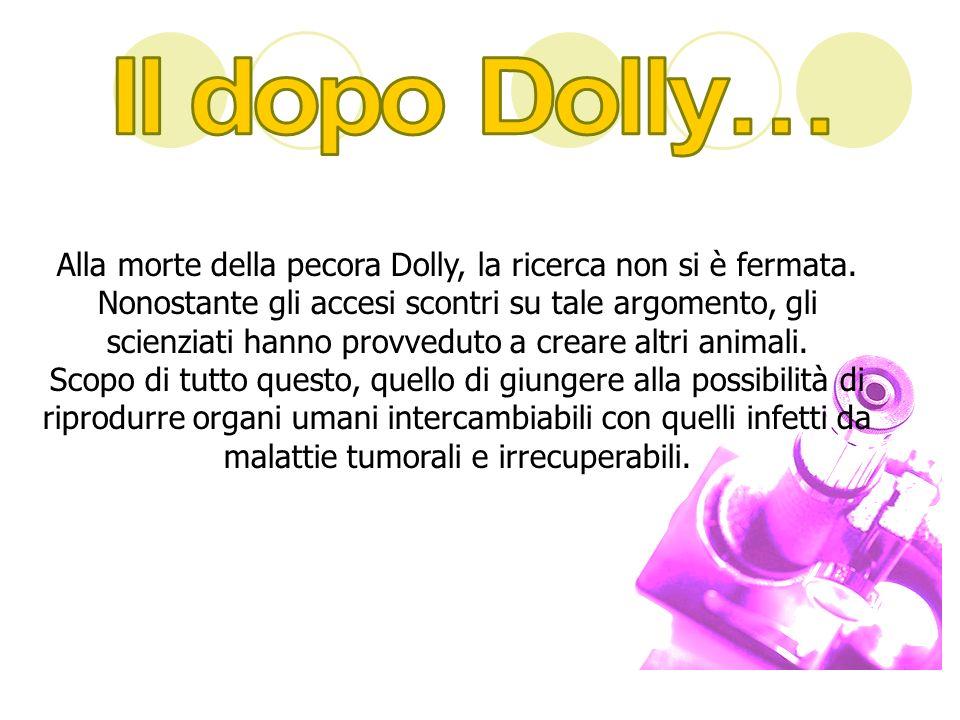 Il dopo Dolly…