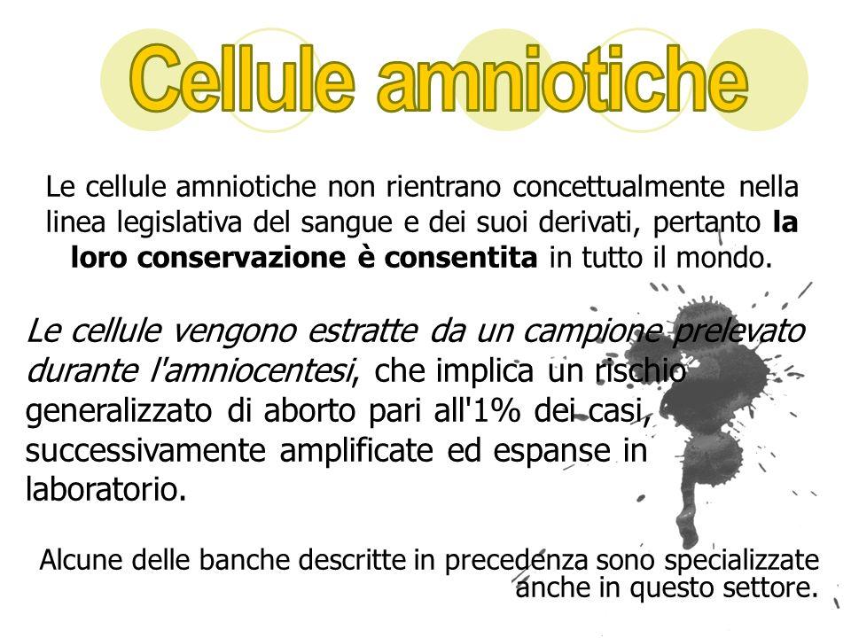 Cellule amniotiche